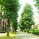 文系のセンター試験得点率は高いなぁ。センター利用で東京の大学を併願校にするのはきついかも~