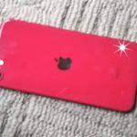 Androidユーザーの夫がスマホを落として画面が割れ、iPhone SEを買おうかと言い出した